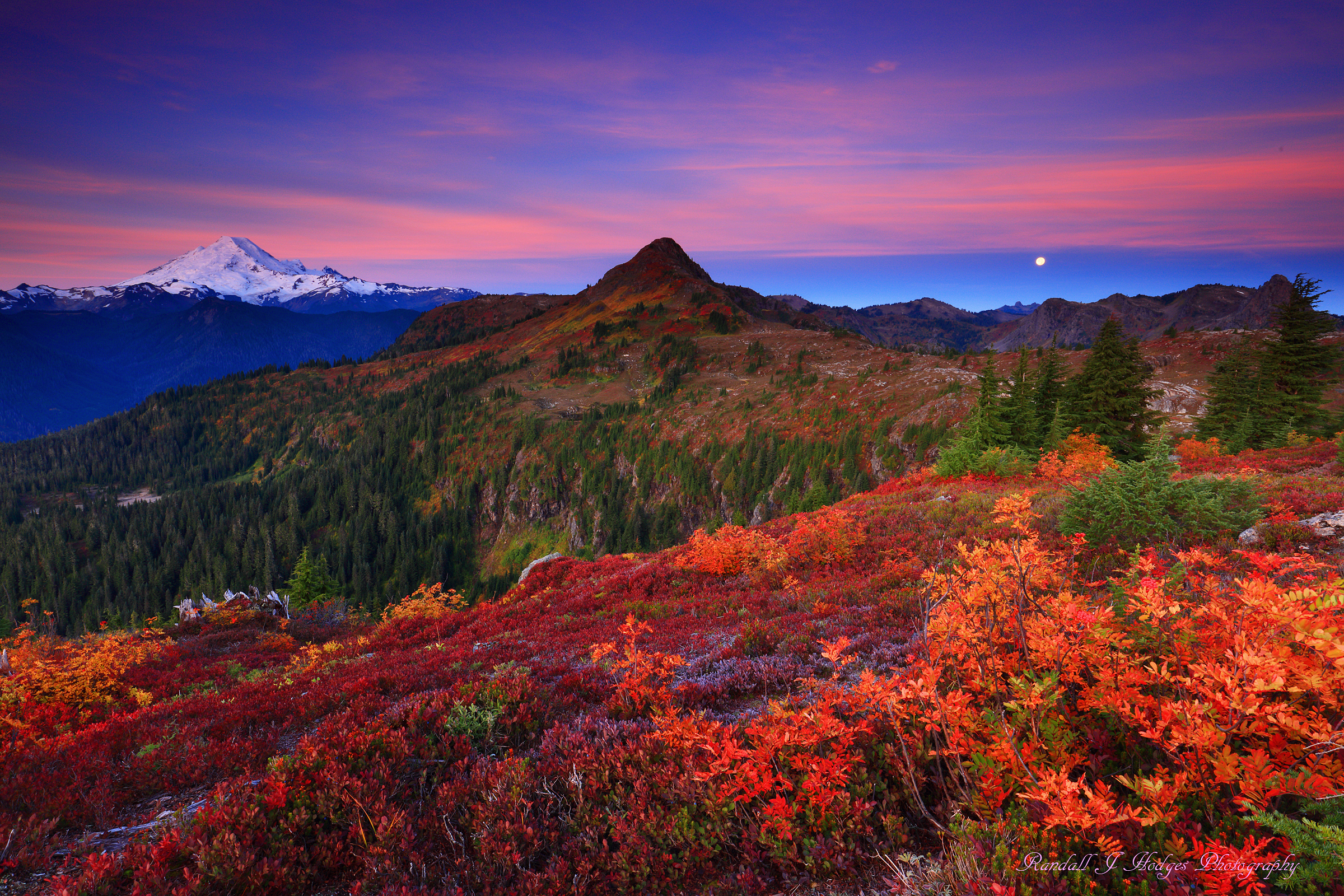 Sunrise Alpenglow Over Fall Color and Mt Baker in the Mt Baker Wilderness in the north Cascades of Washington