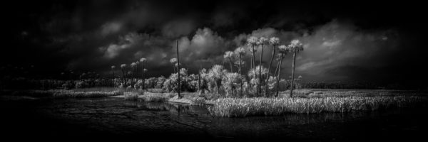 Defining your Infrared Photographic Vision